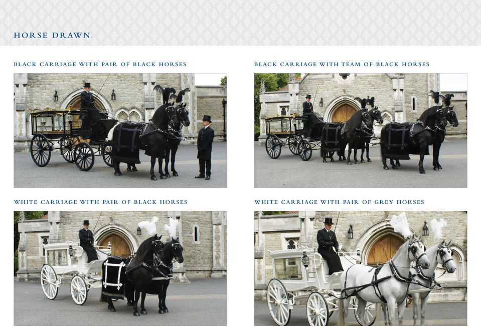 black Horses white Carriage with pair of