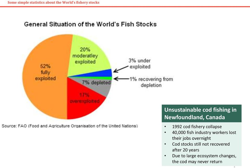 fish industry workers lost their jobs overnight Cod stocks still not