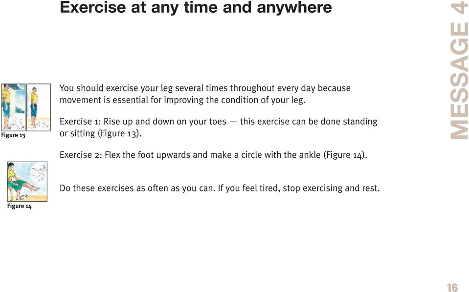 Exercise 1: Rise up and down on your toes this exercise can be done standing or sitting (Figure 13).