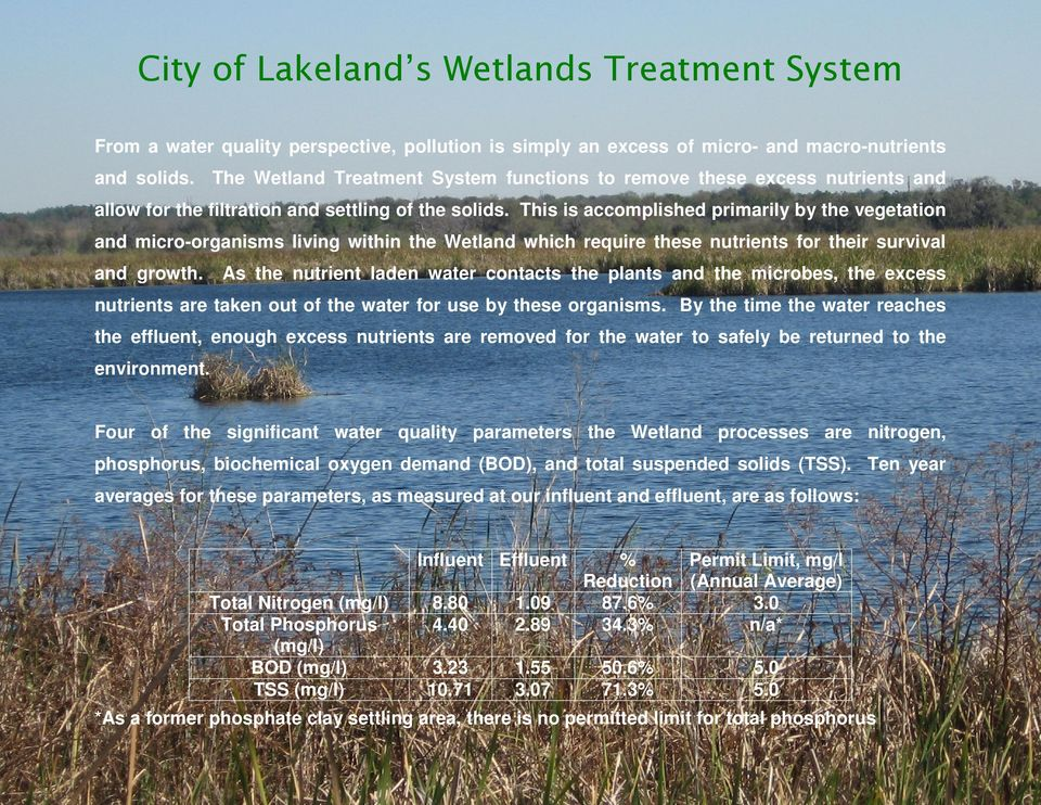 This is accomplished primarily by the vegetation and micro-organisms living within the Wetland which require these nutrients for their survival and growth.