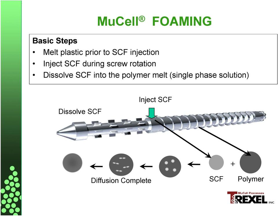 SCF into the polymer melt (single phase solution)