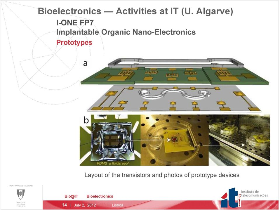 Nano-Electronics Prototypes Layout of the