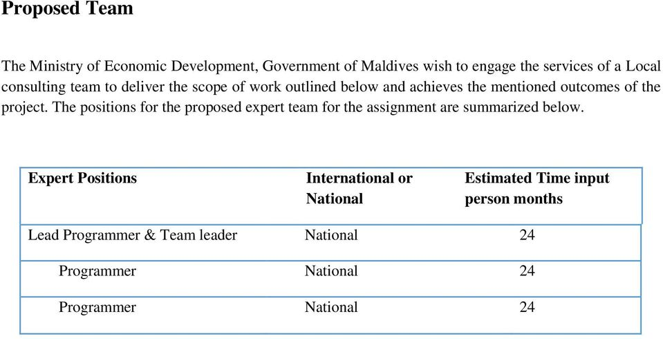 The positions for the proposed expert team for the assignment are summarized below.