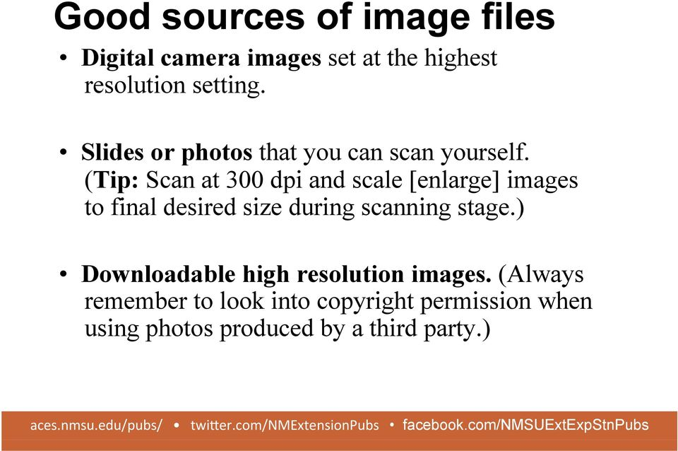 (Tip: Scan at 300 dpi and scale [enlarge] images to final desired size during scanning