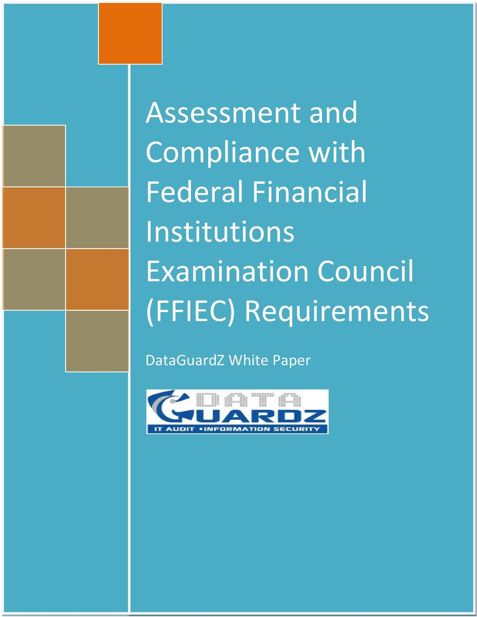 Examination Council (FFIEC) Requirements