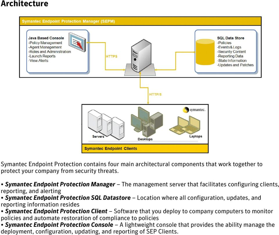where all configuration, updates, and reporting information resides Symantec Endpoint Protection Client Software that you deploy to company computers to monitor policies and