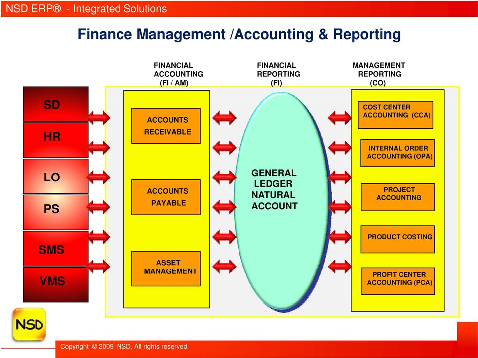 INTERNAL ORDER ACCOUNTING (OPA) LO PS ACCOUNTS PAYABLE GENERAL LEDGER NATURAL ACCOUNT