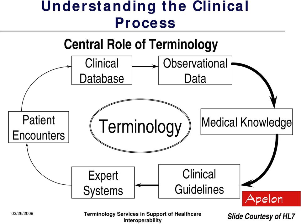 Patient Encounters Terminology Medical Knowledge
