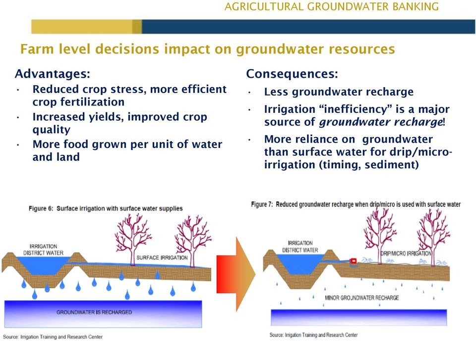land Consequences: Less groundwater recharge Irrigation inefficiency is a major source of