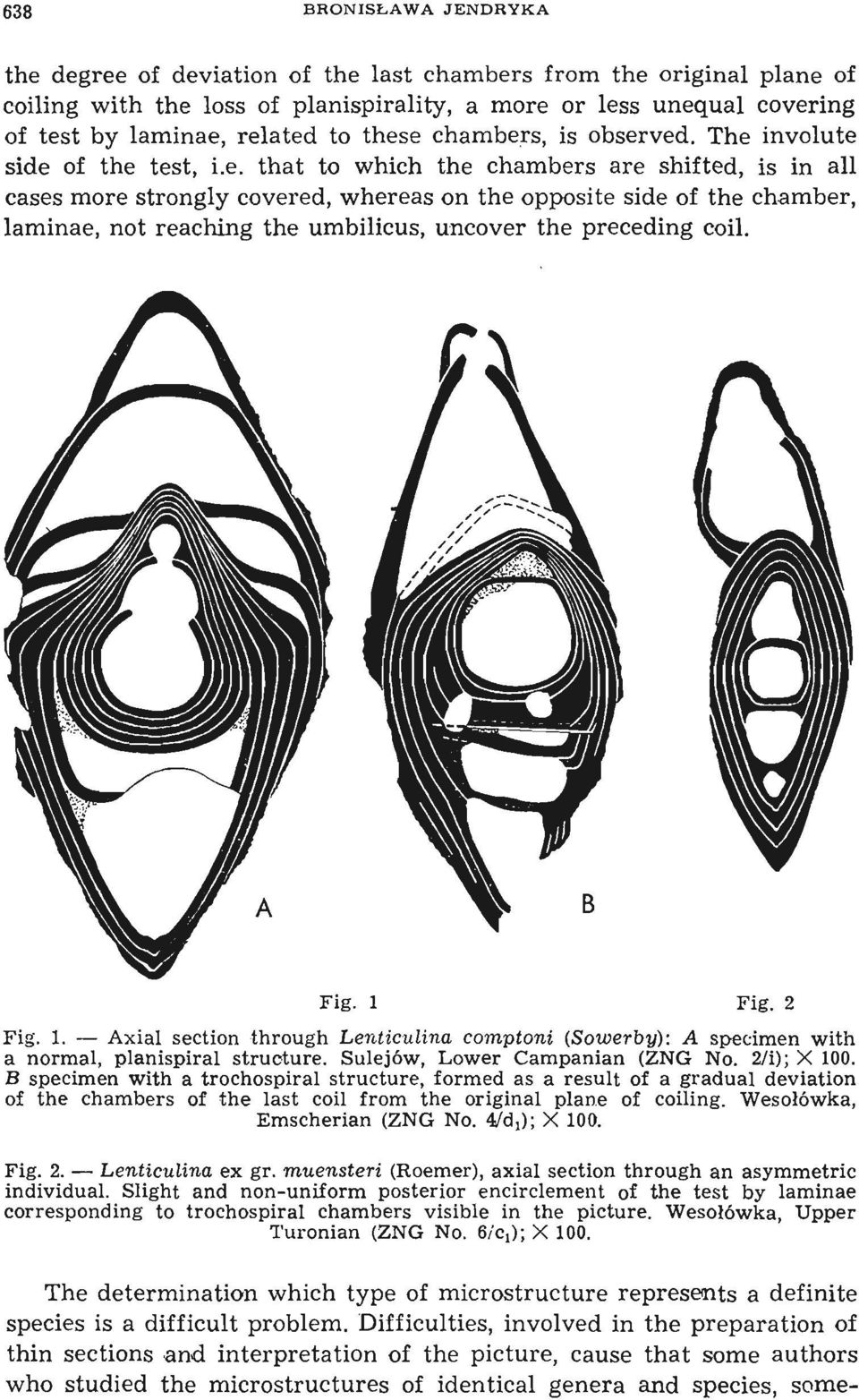 that to which the chambers are shifted, is in all cases more strongly covered, whereas on the opposite side of the chamber, laminae, not reaching the umbilicus, uncover the preceding coil. Fig. 1 Fig.