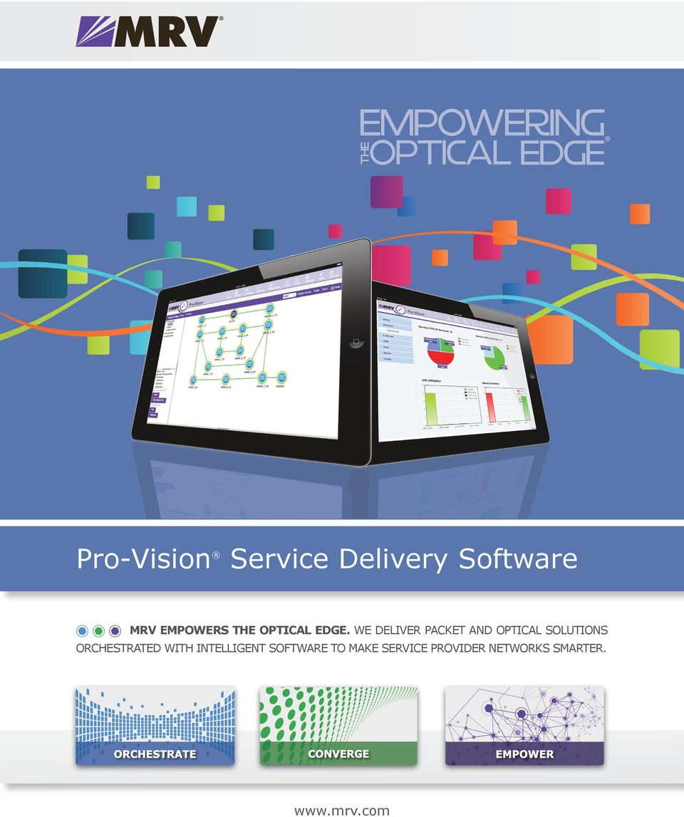 WE DELIVER PACKET AND OPTICAL SOLUTIONS