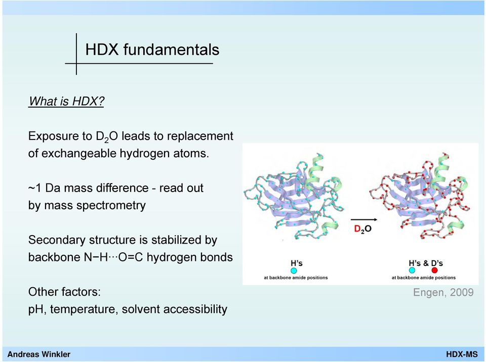 ~1 Da mass difference - read out by mass spectrometry Secondary