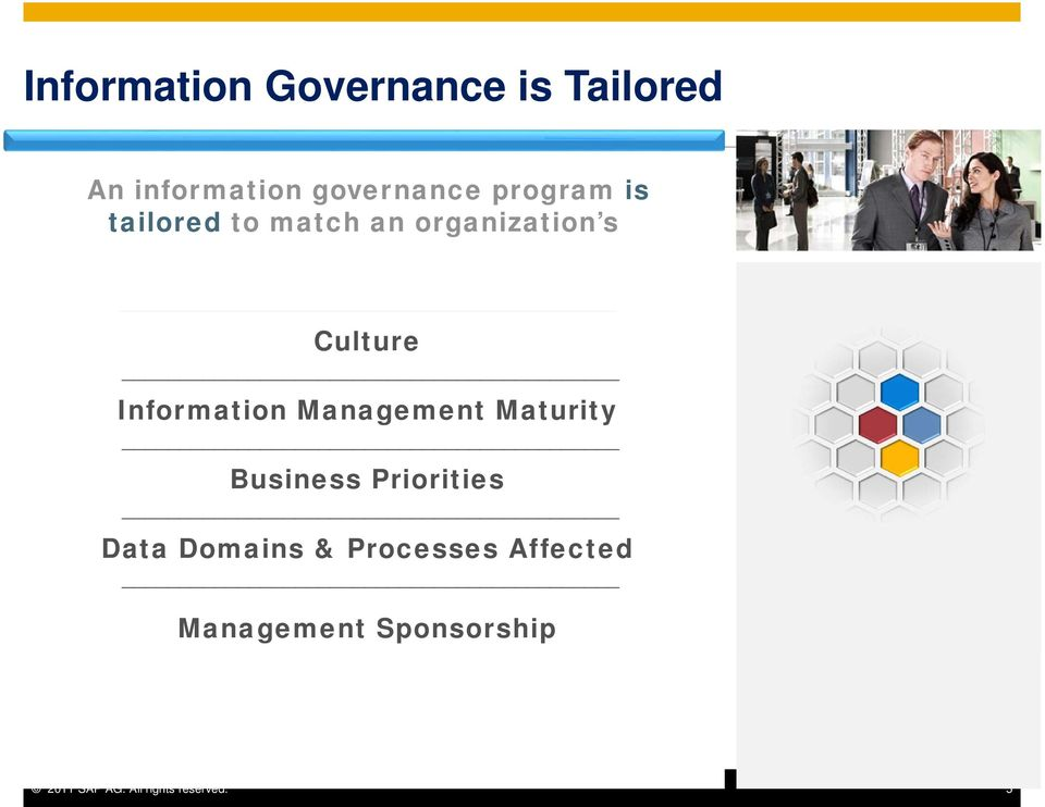 Information Management Maturity Business Priorities Data Domains