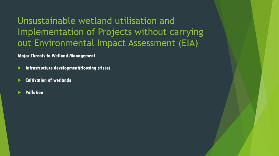 Assessment (EIA) Major Threats to Wetland Management