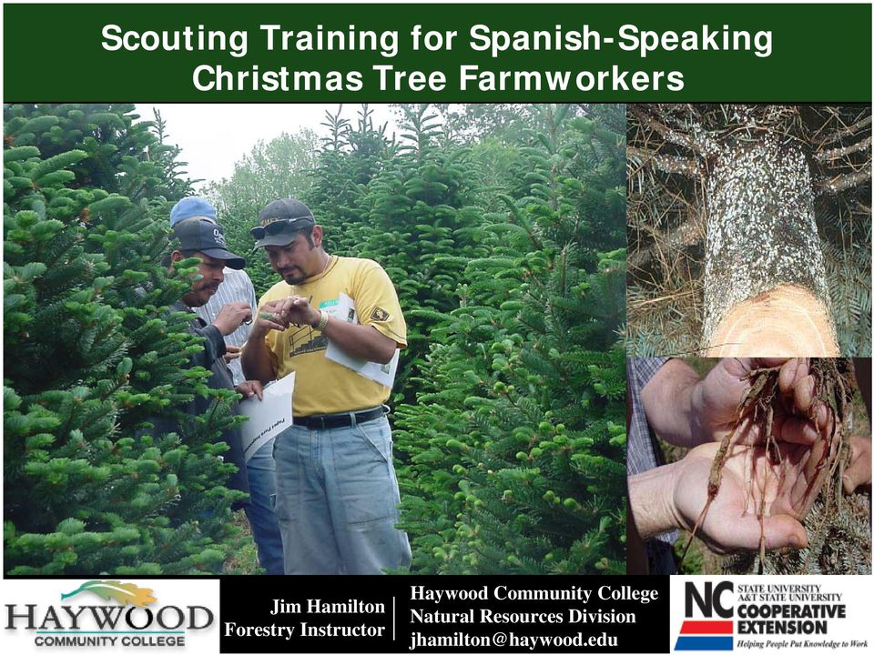 Forestry Instructor Haywood Community