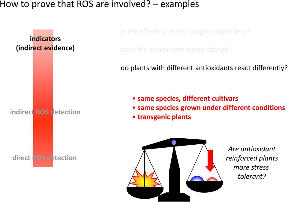 do plants with different antioxidants react differently?