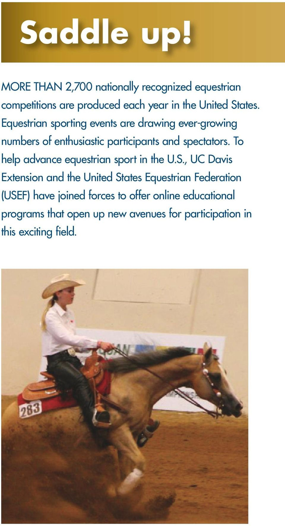 Equestrian sporting events are drawing ever-growing numbers of enthusiastic participants and spectators.