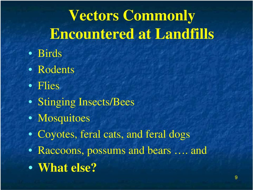 Mosquitoes Coyotes, feral cats, and feral