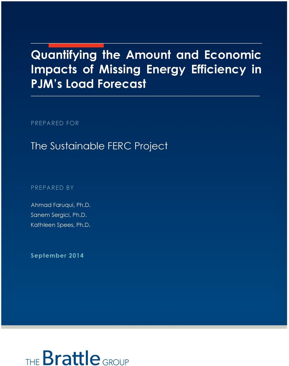 The Sustainable FERC Project PREPARED BY Ahmad Faruqui,