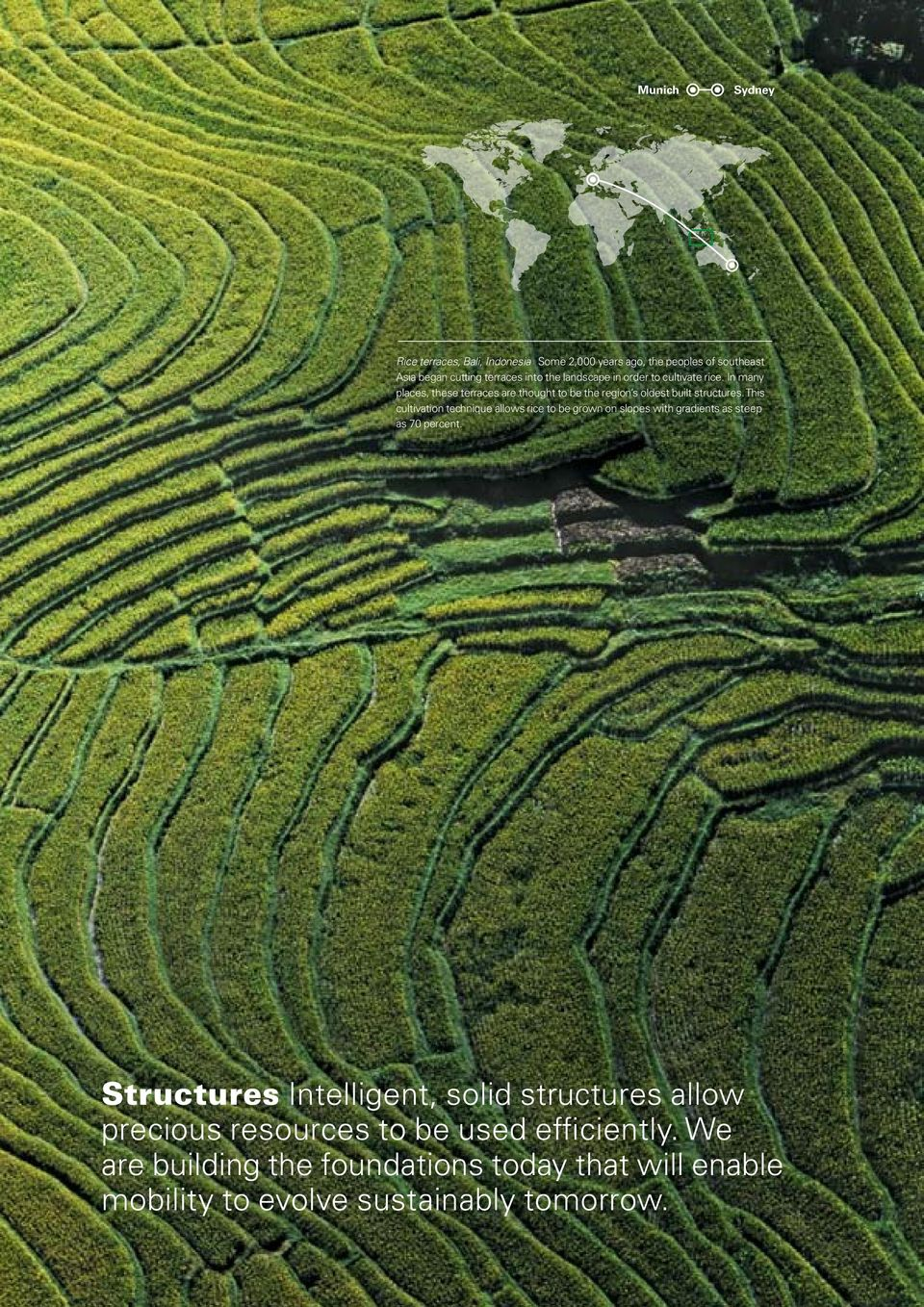 This cultivation technique allows rice to be grown on slopes with gradients as steep as 70 percent.