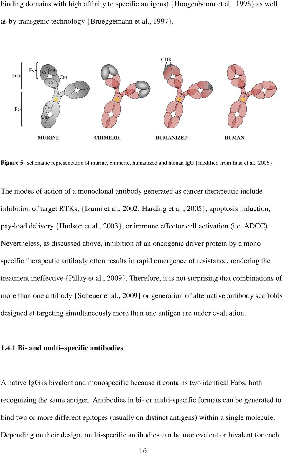 The modes of action of a monoclonal antibody generated as cancer therapeutic include inhibition of target RTKs, {Izumi et al., 2002; Harding et al.