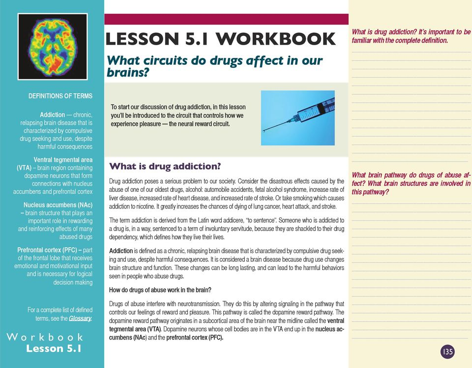 effects of many abused drugs Prefrontal cortex (PFC) part of the frontal lobe that receives emotional and motivational input and is necessary for logical decision making For a complete list of