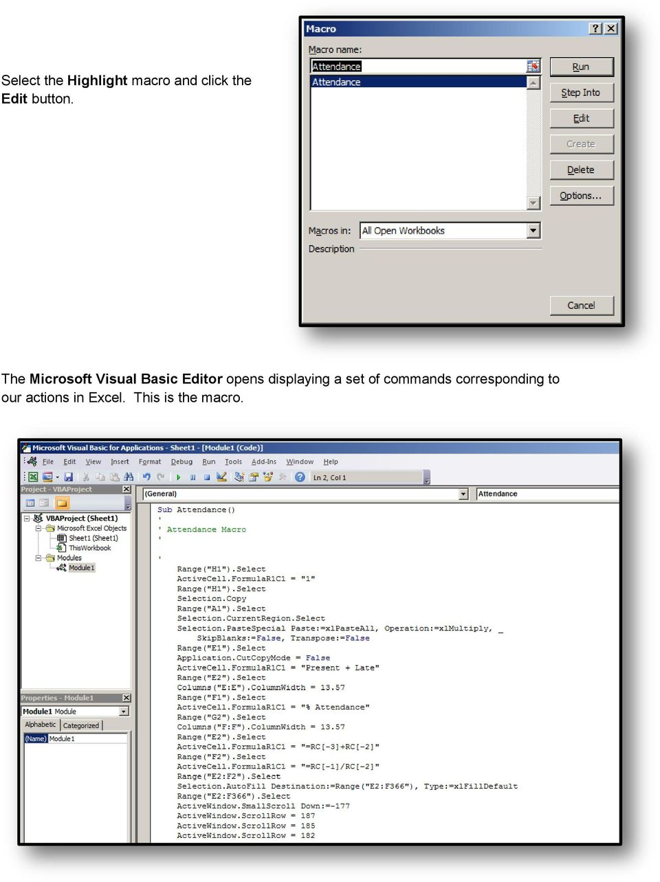 The Microsoft Visual Basic Editor opens