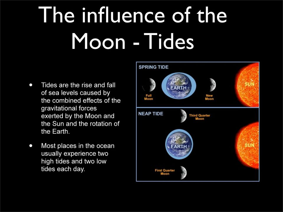 exerted by the Moon and the Sun and the rotation of the Earth.