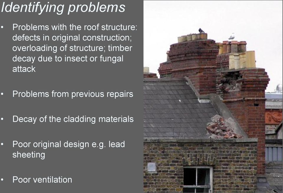 insect or fungal attack Problems from previous repairs Decay of the