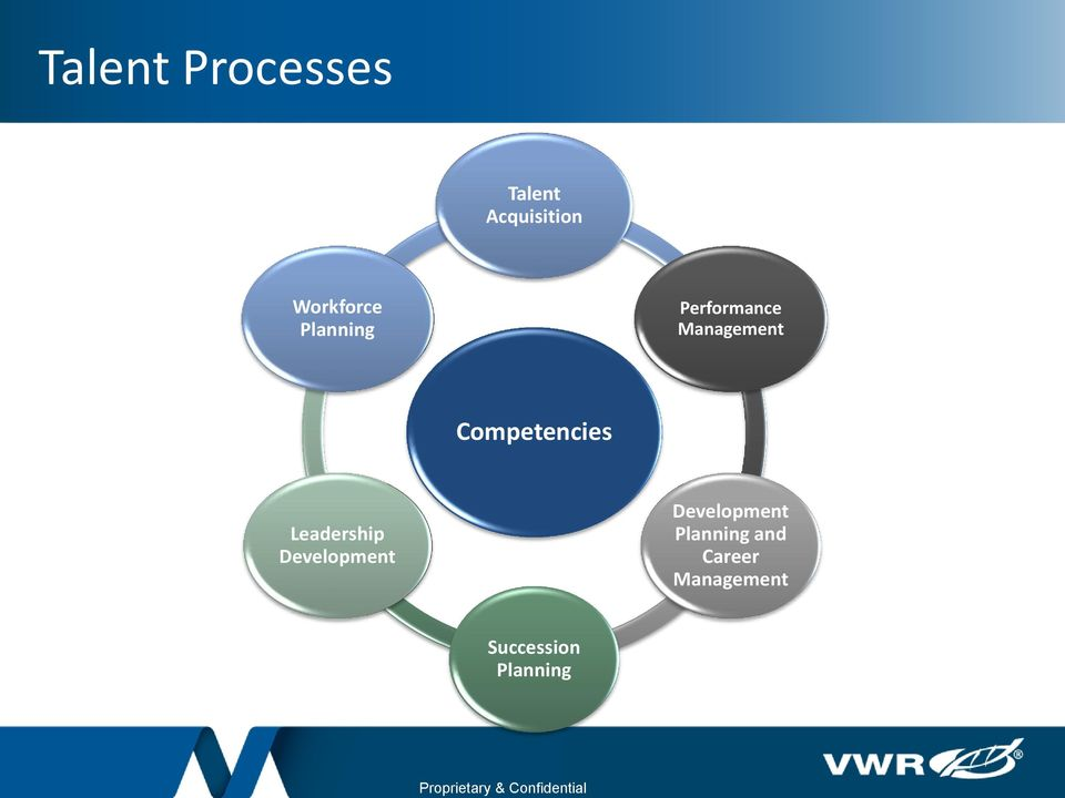 Management Competencies Leadership Development