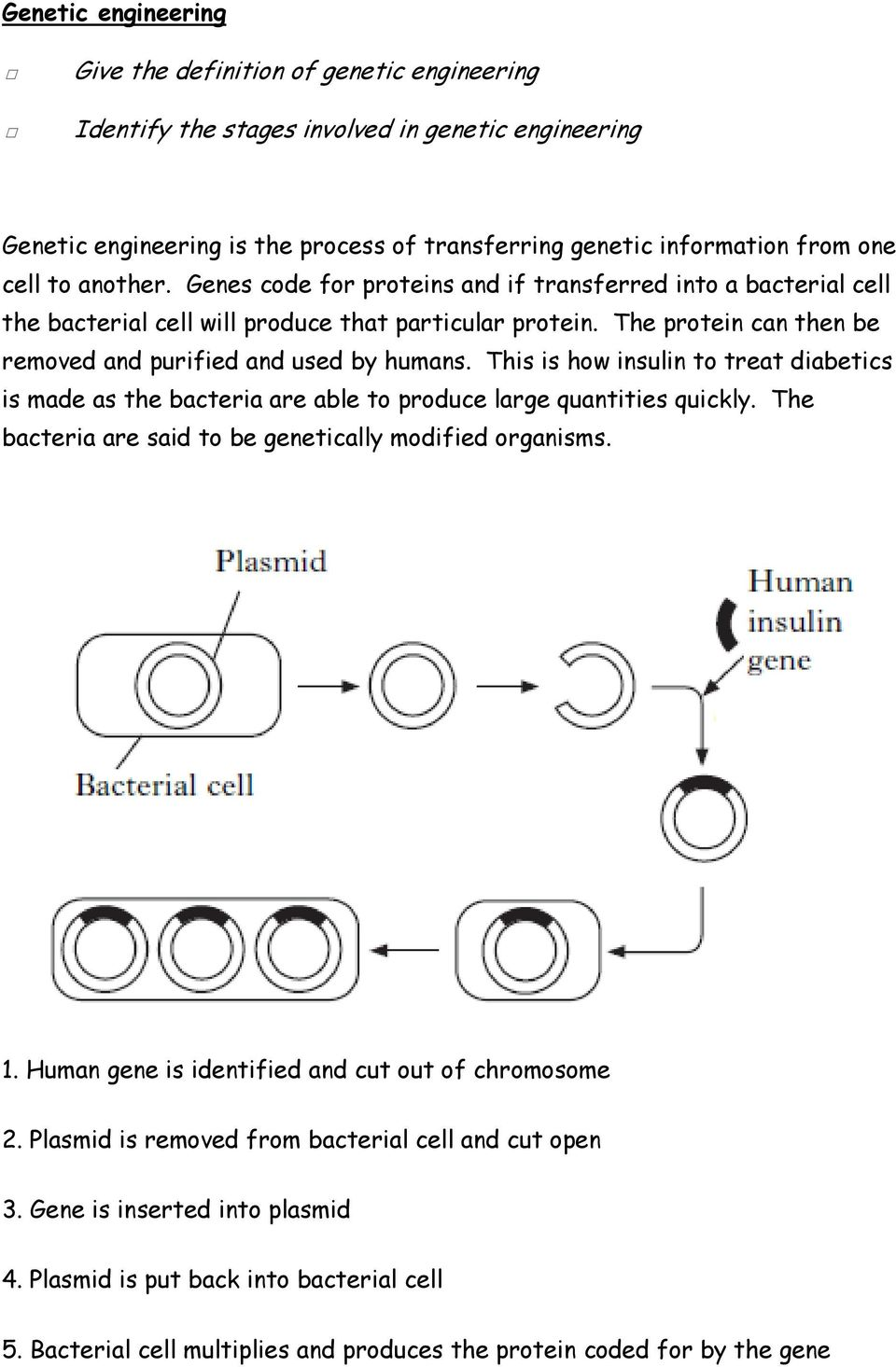 This is how insulin to treat diabetics is made as the bacteria are able to produce large quantities quickly. The bacteria are said to be genetically modified organisms. 1.