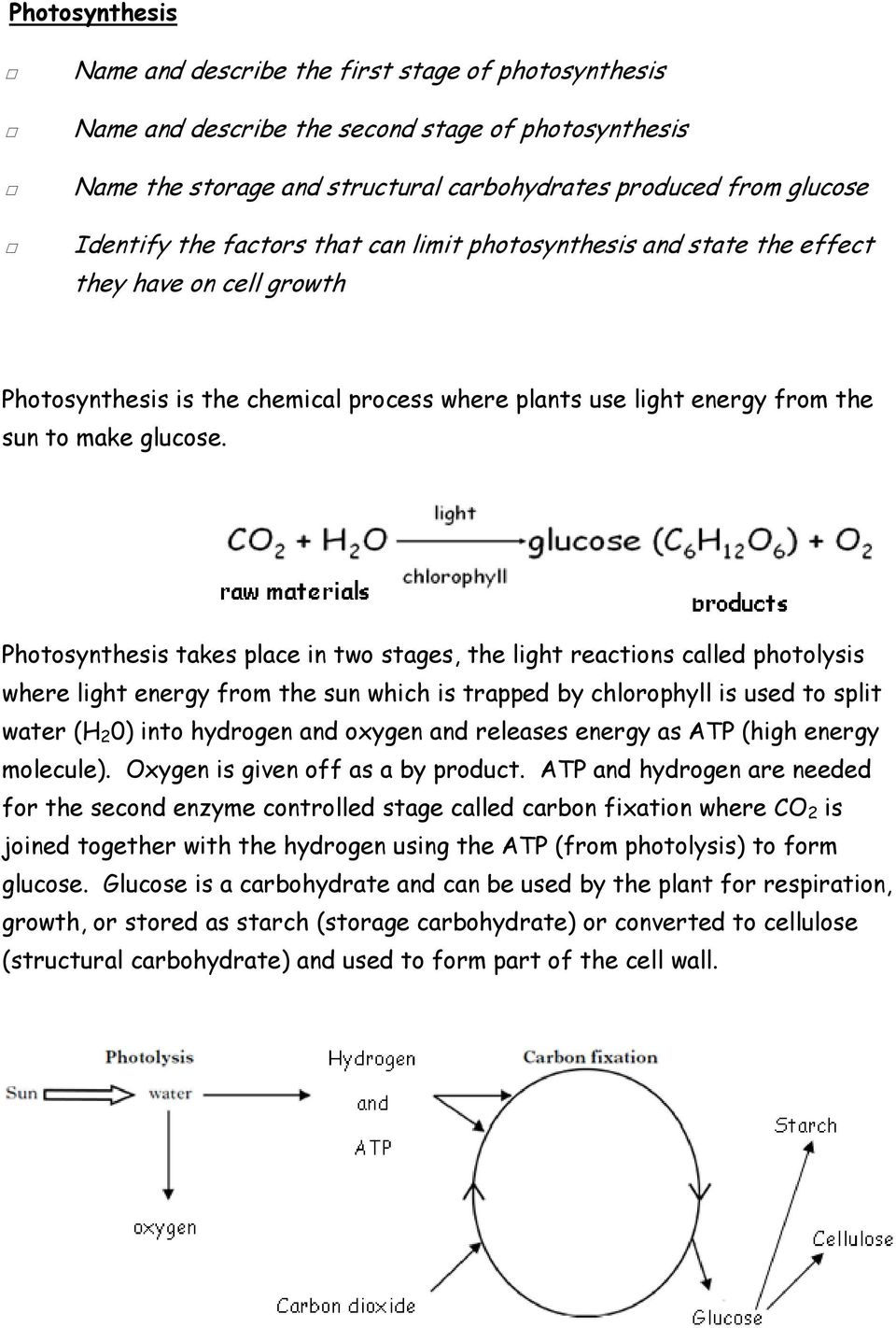 Photosynthesis takes place in two stages, the light reactions called photolysis where light energy from the sun which is trapped by chlorophyll is used to split water (H 2 0) into hydrogen and oxygen