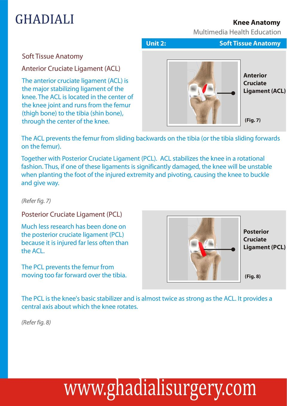 Unit 2: Soft Tissue Anatomy Anterior Cruciate Ligament (ACL) (Fig. 7) The ACL prevents the femur from sliding backwards on the tibia (or the tibia sliding forwards on the femur).