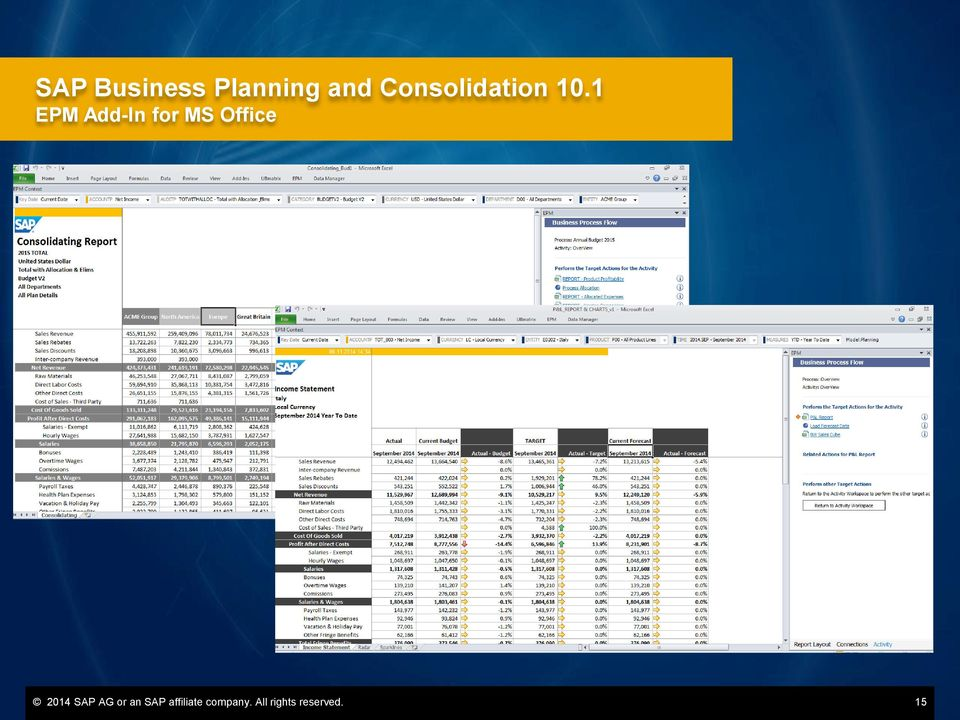 1 EPM Add-In for MS Office 2014