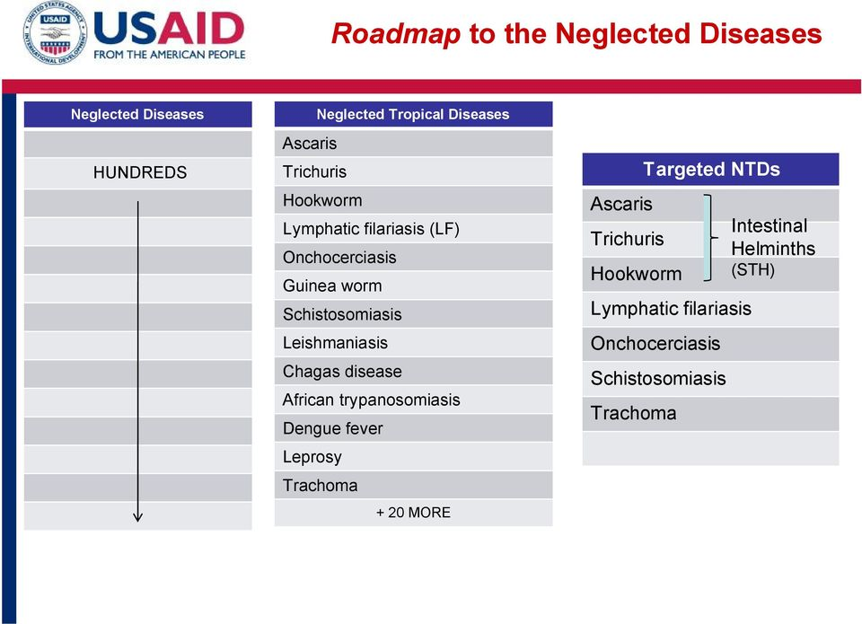 Chagas disease African trypanosomiasis Dengue fever Leprosy Trachoma + 20 MORE Ascaris Trichuris