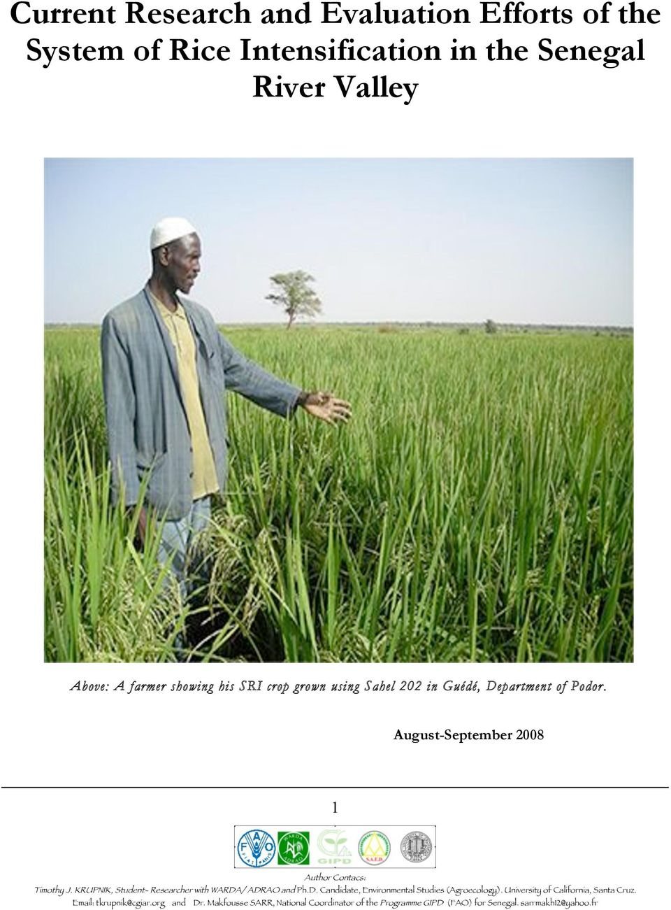 Above: A farmer showing his SRI crop grown using Sahel