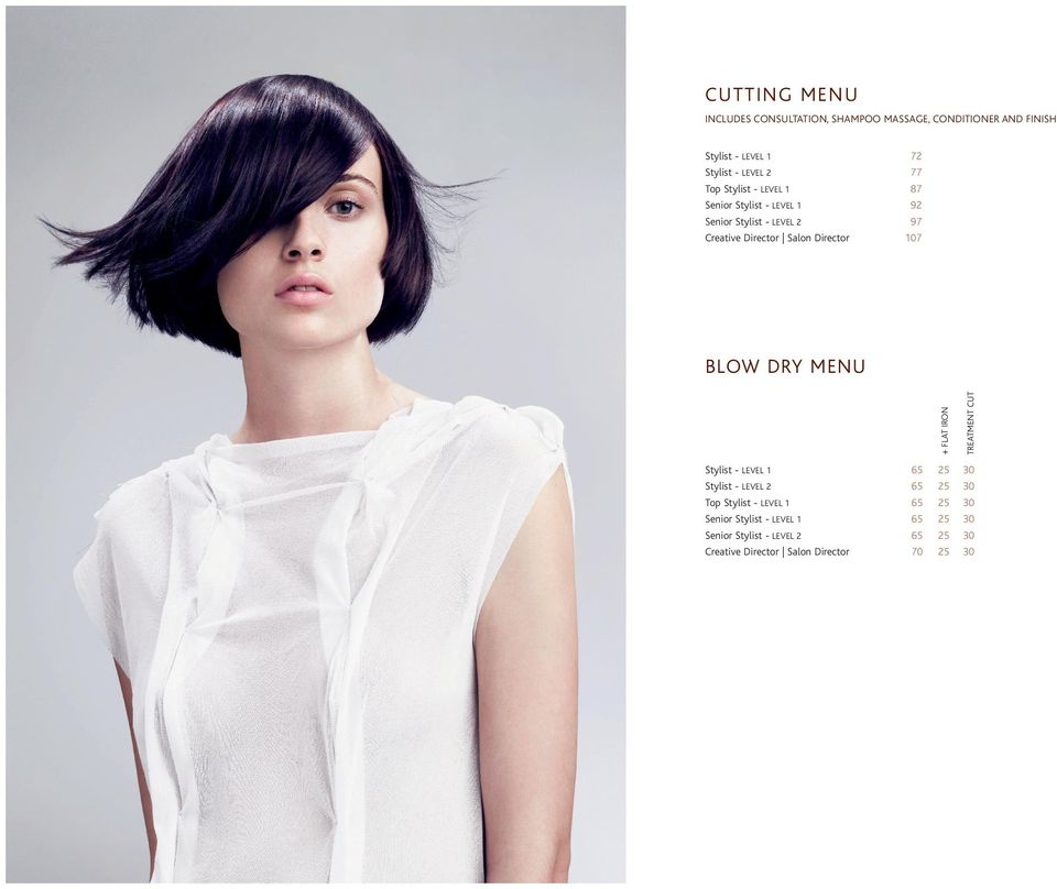 87 92 97 107 BLOW DRY MENU Stylist - LEVEL 1 Stylist - LEVEL 2 Top Stylist - LEVEL 1 Senior Stylist - LEVEL 1 Senior