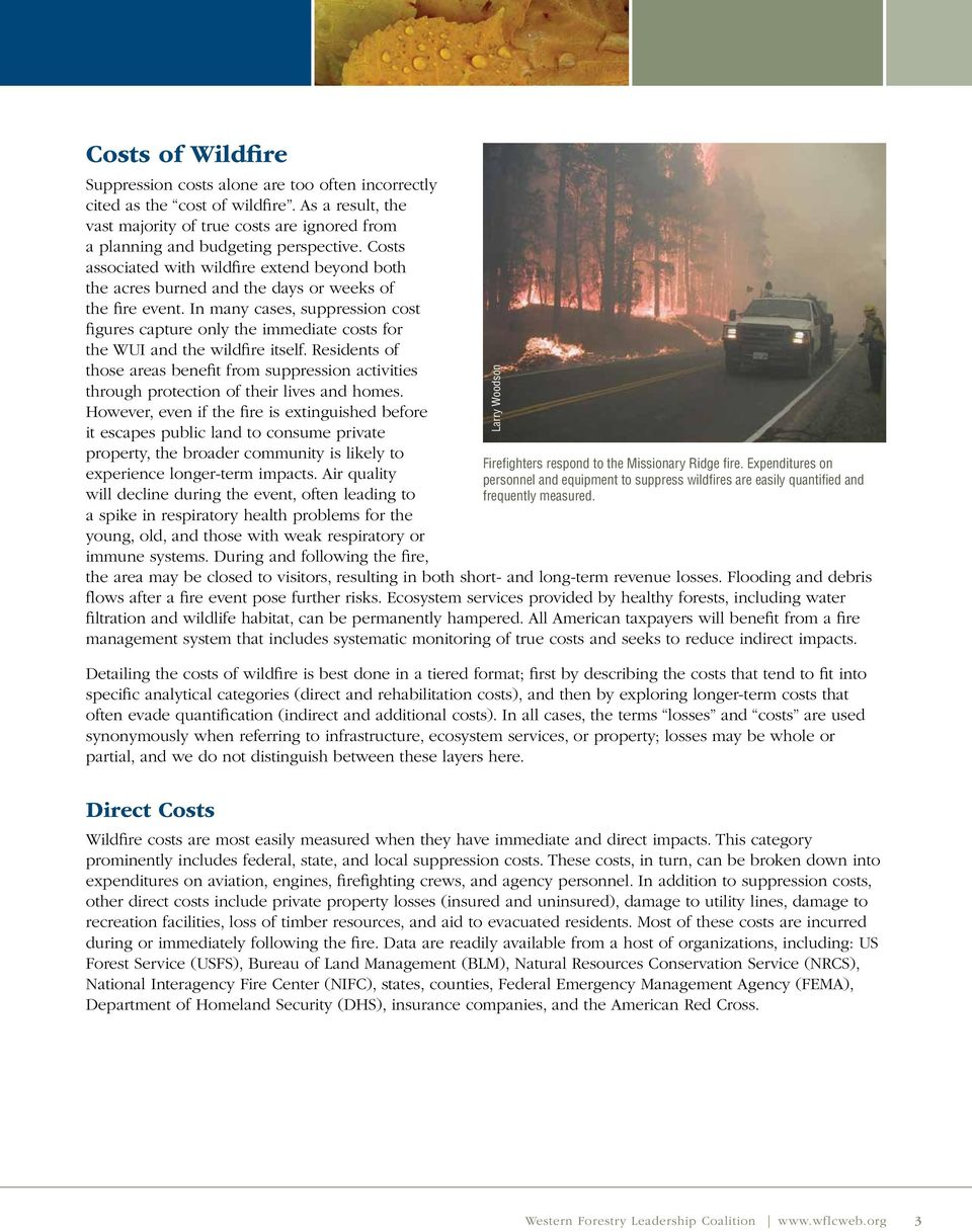 In many cases, suppression cost figures capture only the immediate costs for the WUI and the wildfire itself.