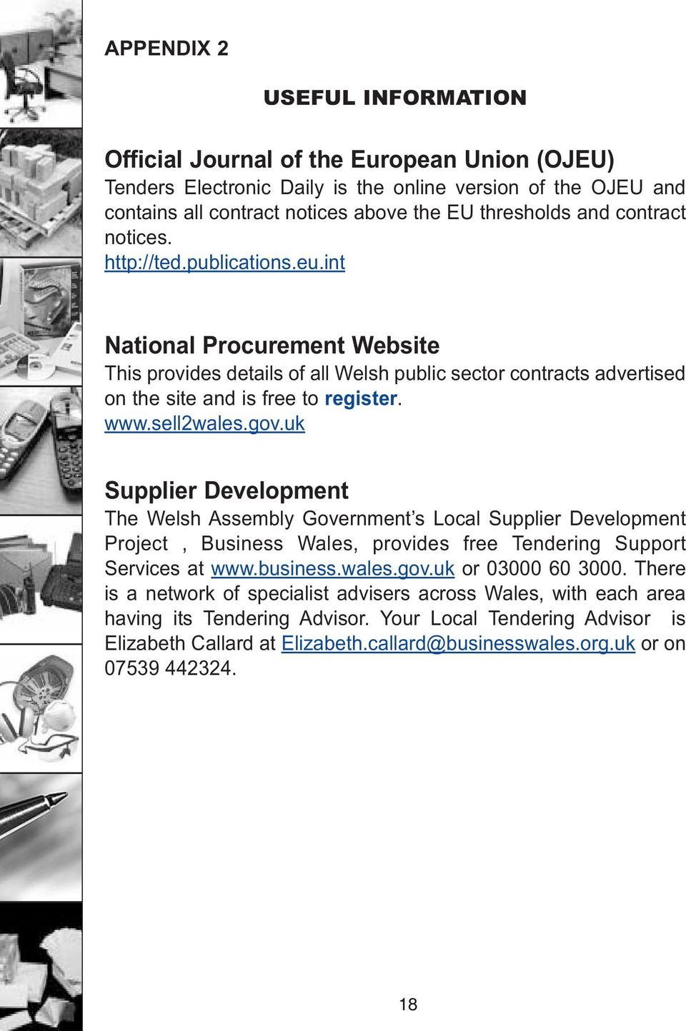 gov.uk Supplier Development The Welsh Assembly Government s Local Supplier Development Project, Business Wales, provides free Tendering Support Services at www.business.wales.gov.uk or 03000 60 3000.