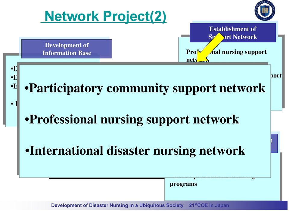 network Participatory community support network Participatory community support network International disaster nursing network Professional nursing support network