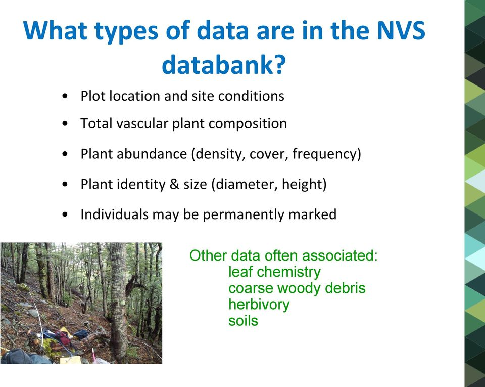 abundance (density, cover, frequency) Plant identity & size (diameter, height)