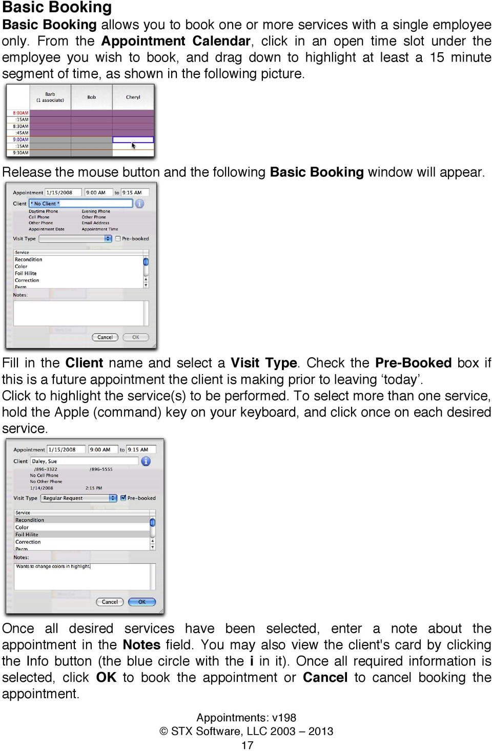 Release the mouse button and the following Basic Booking window will appear. Fill in the Client name and select a Visit Type.