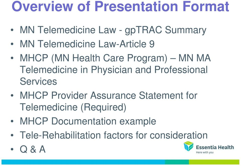 Physician and Professional Services MHCP Provider Assurance Statement for