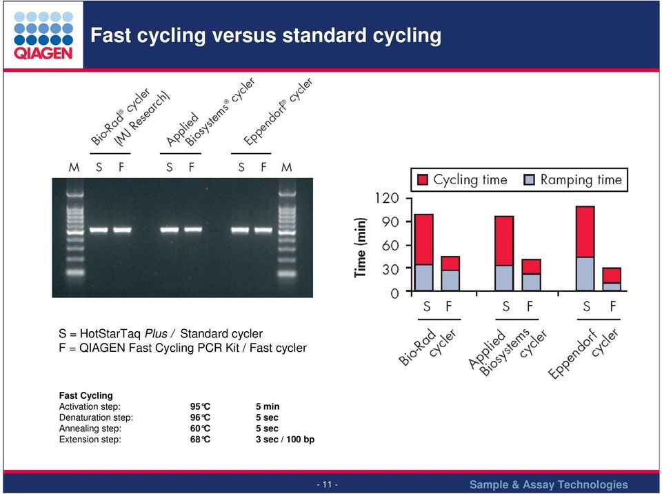 Fast Cycling Activation step: 95 C 5 min Denaturation step: 96 C
