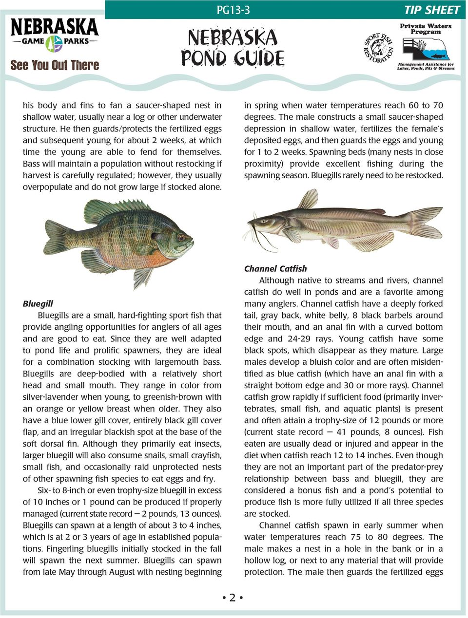 Bass will maintain a population without restocking if harvest is carefully regulated; however, they usually overpopulate and do not grow large if stocked alone.