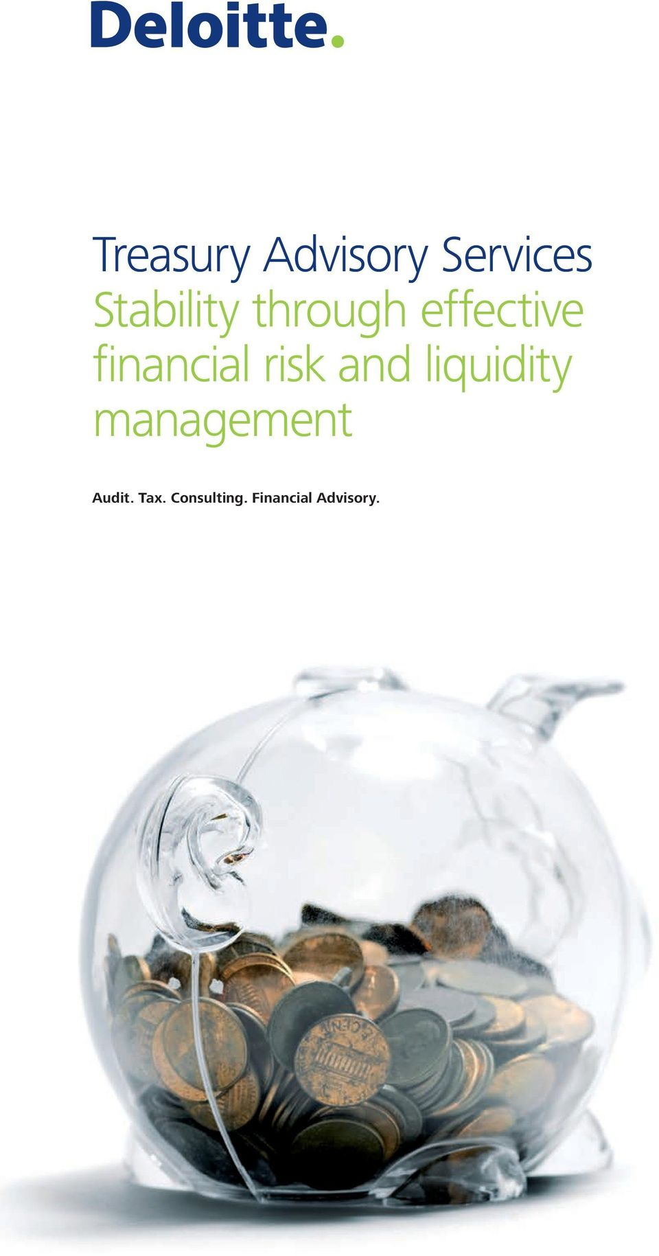 financial risk and liquidity