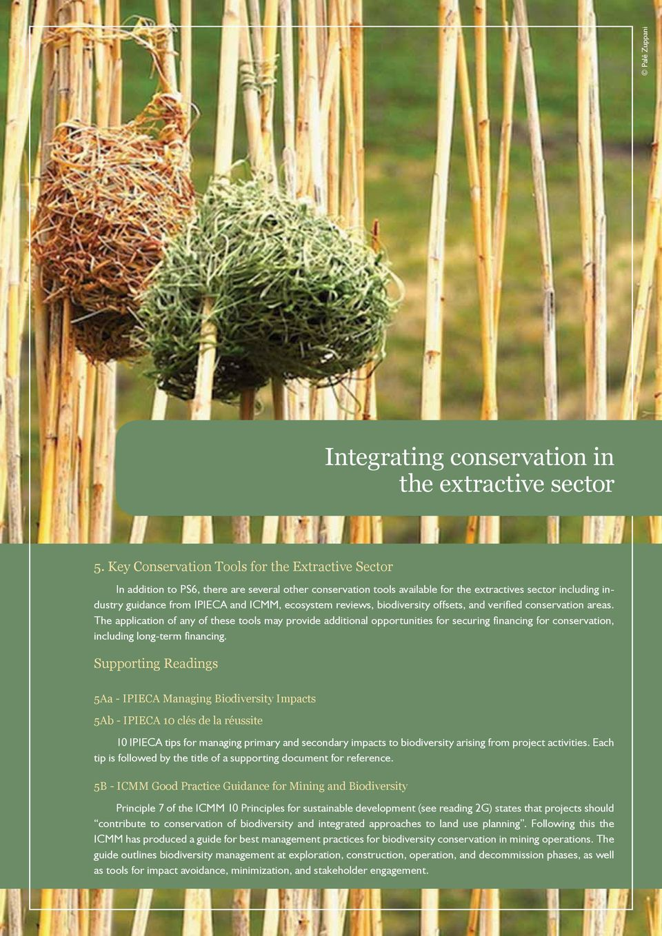 ecosystem reviews, biodiversity offsets, and verified conservation areas.