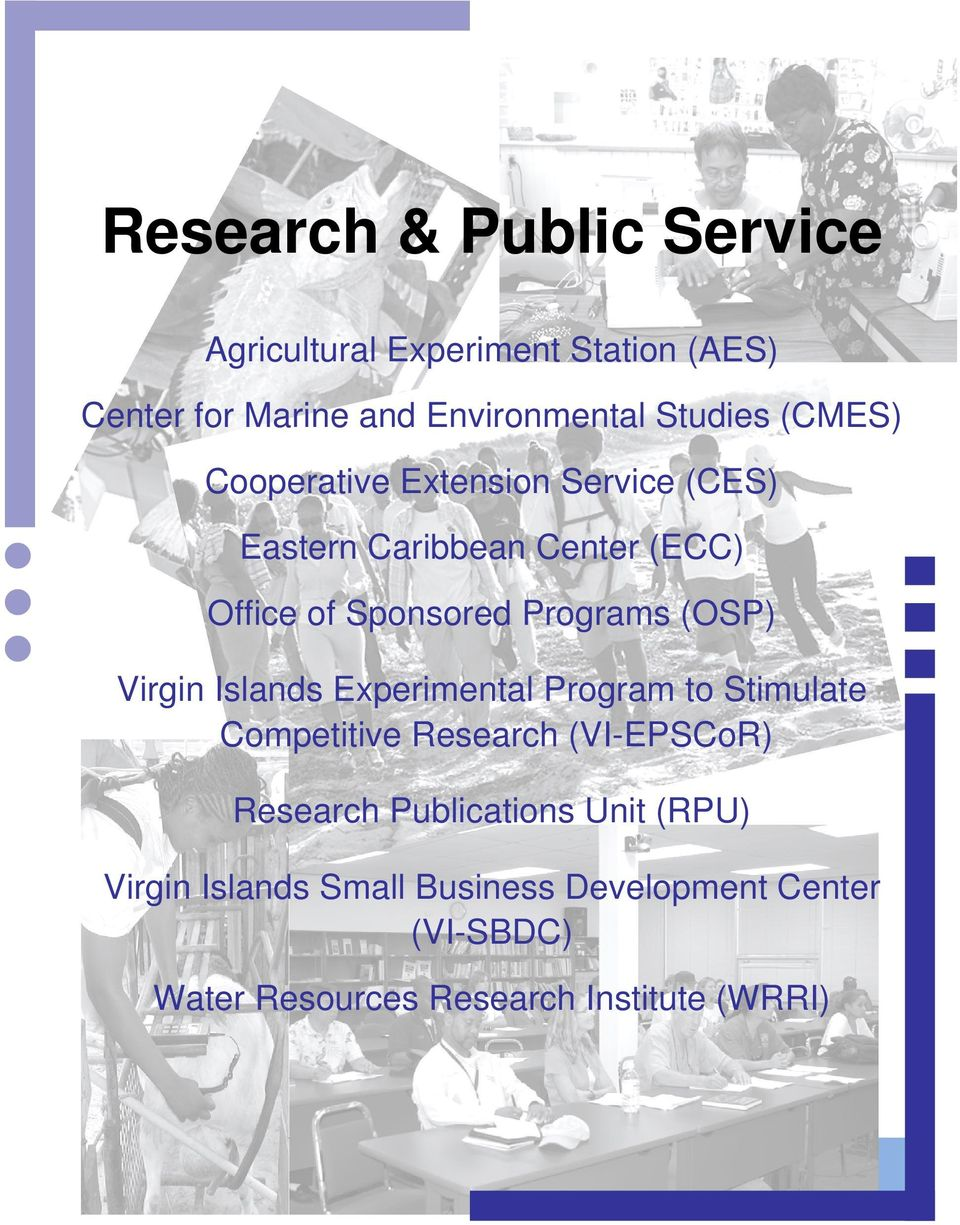 Experimental Program to Stimulate Competitive Research (VI-EPSCoR) Research Publications Unit (RPU) Virgin Islands Small