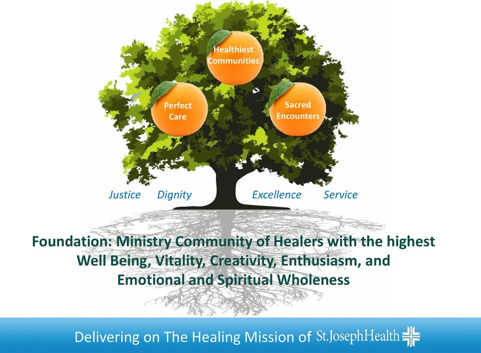 Healers with the highest Well Being, Vitality, Creativity,