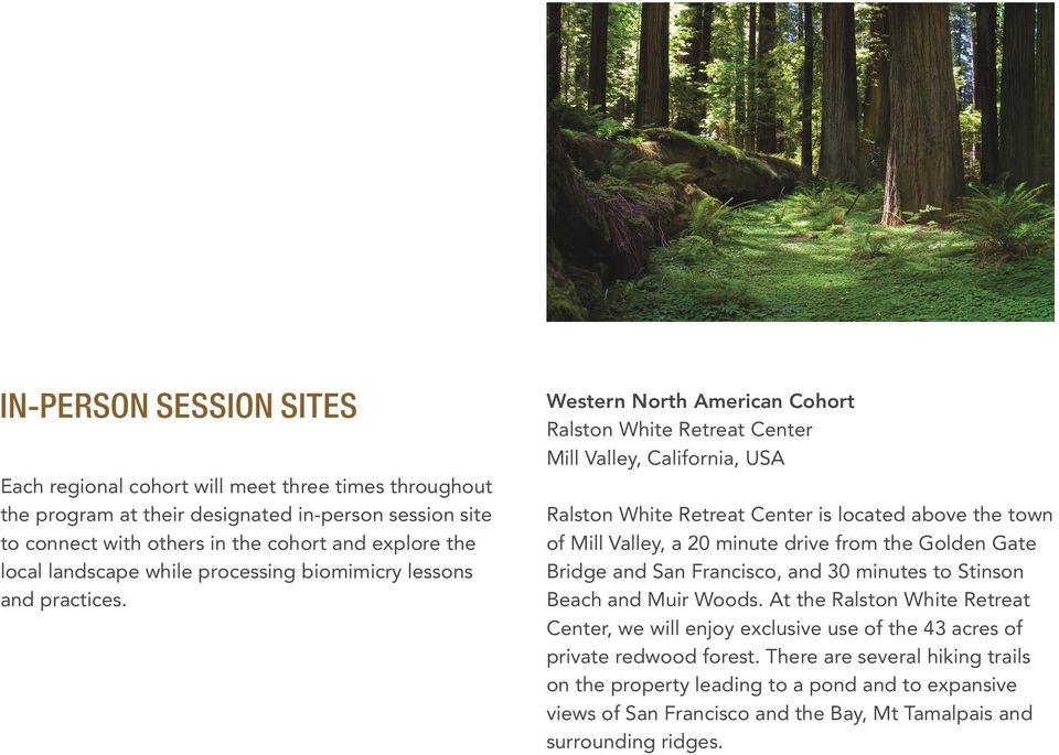 Western North American Cohort Ralston White Retreat Center Mill Valley, California, USA Ralston White Retreat Center is located above the town of Mill Valley, a 20 minute drive from the Golden